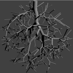 Exemplo de rede vascular.