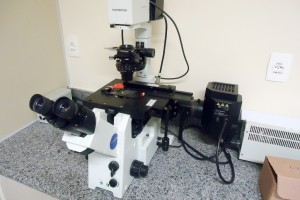 Microscópio Invertido de Fluorescência
