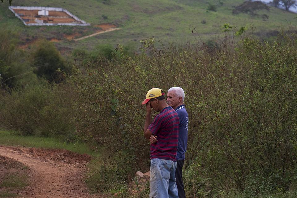 Em Gesteira, distrito de Barra Longa, as plantas semeadas pela Renova disfarçam a montanha de rejeitos depositados nas margens do rio Gualaxo do Norte (Foto: Gabriel Duarte)